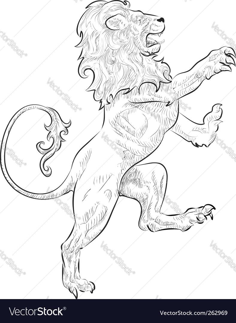 Lion illustration vector image