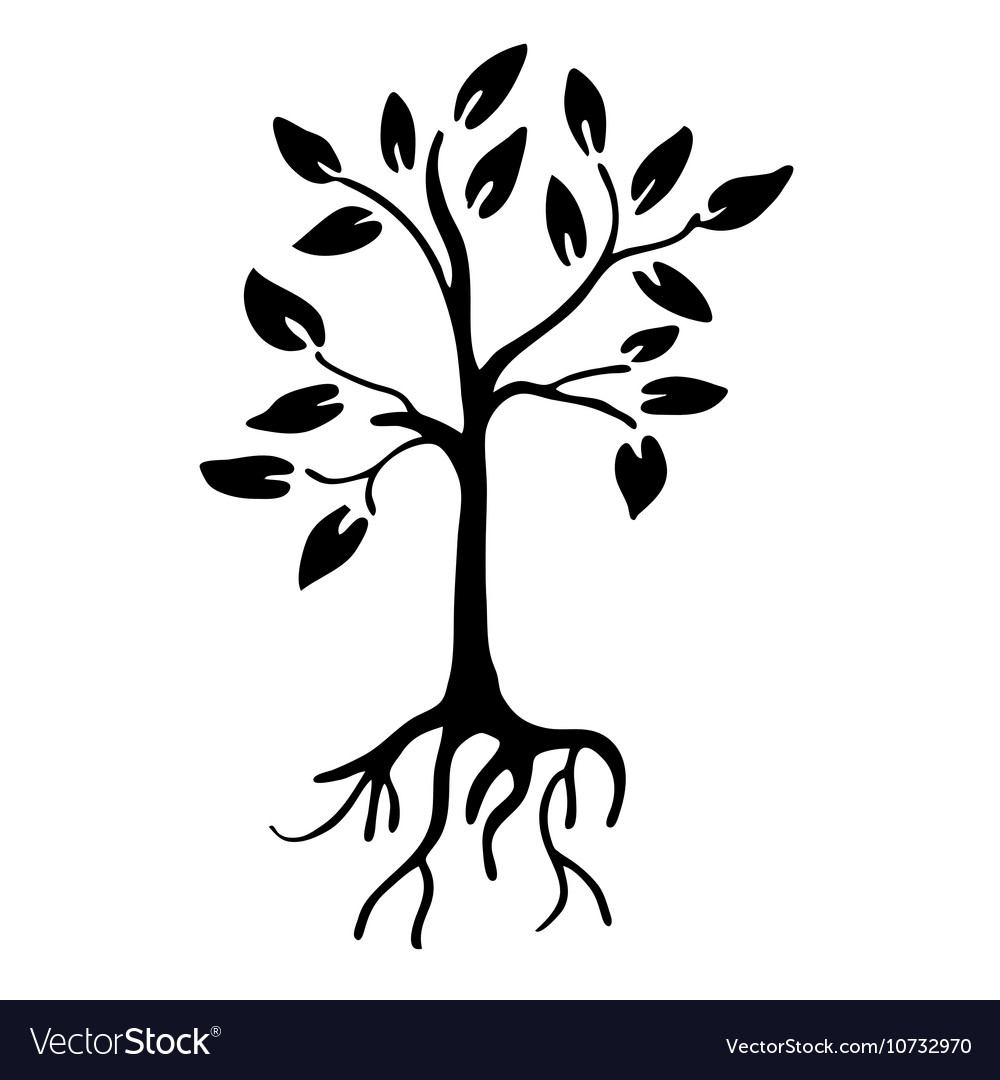 Hiqh quality Tree silhouette with leaves and roots vector image