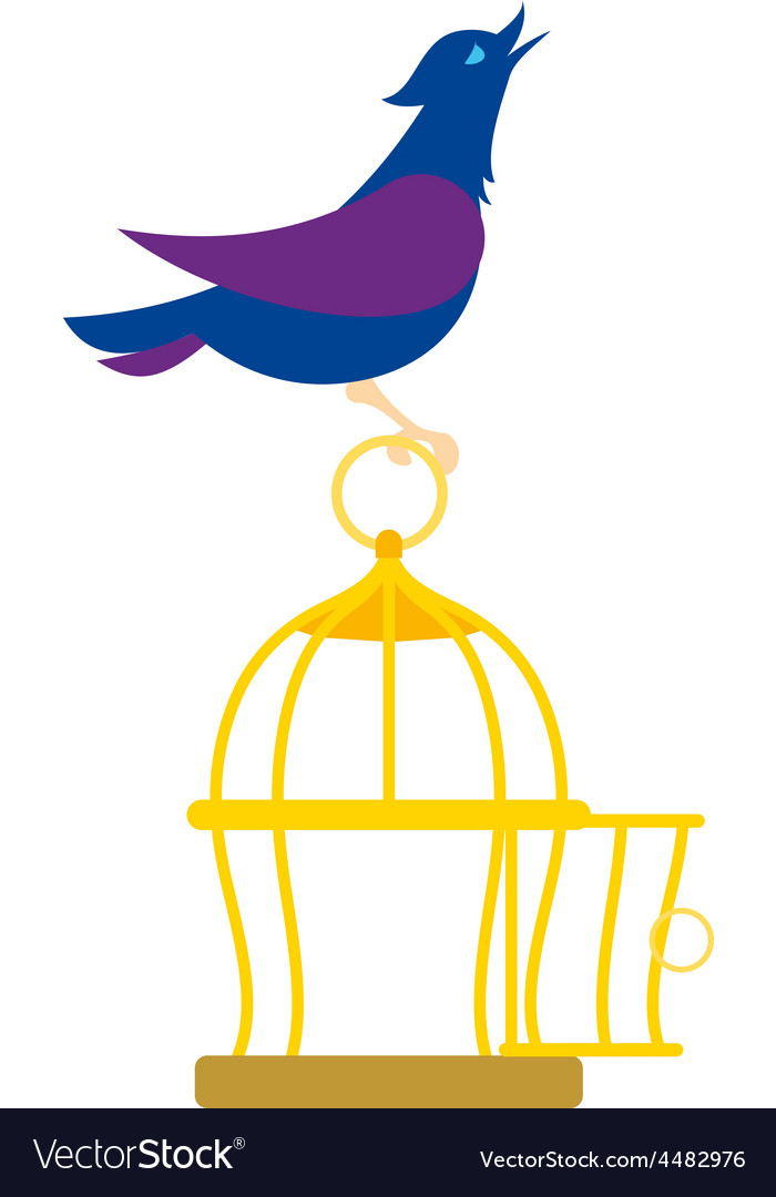Bird on the cage vector image