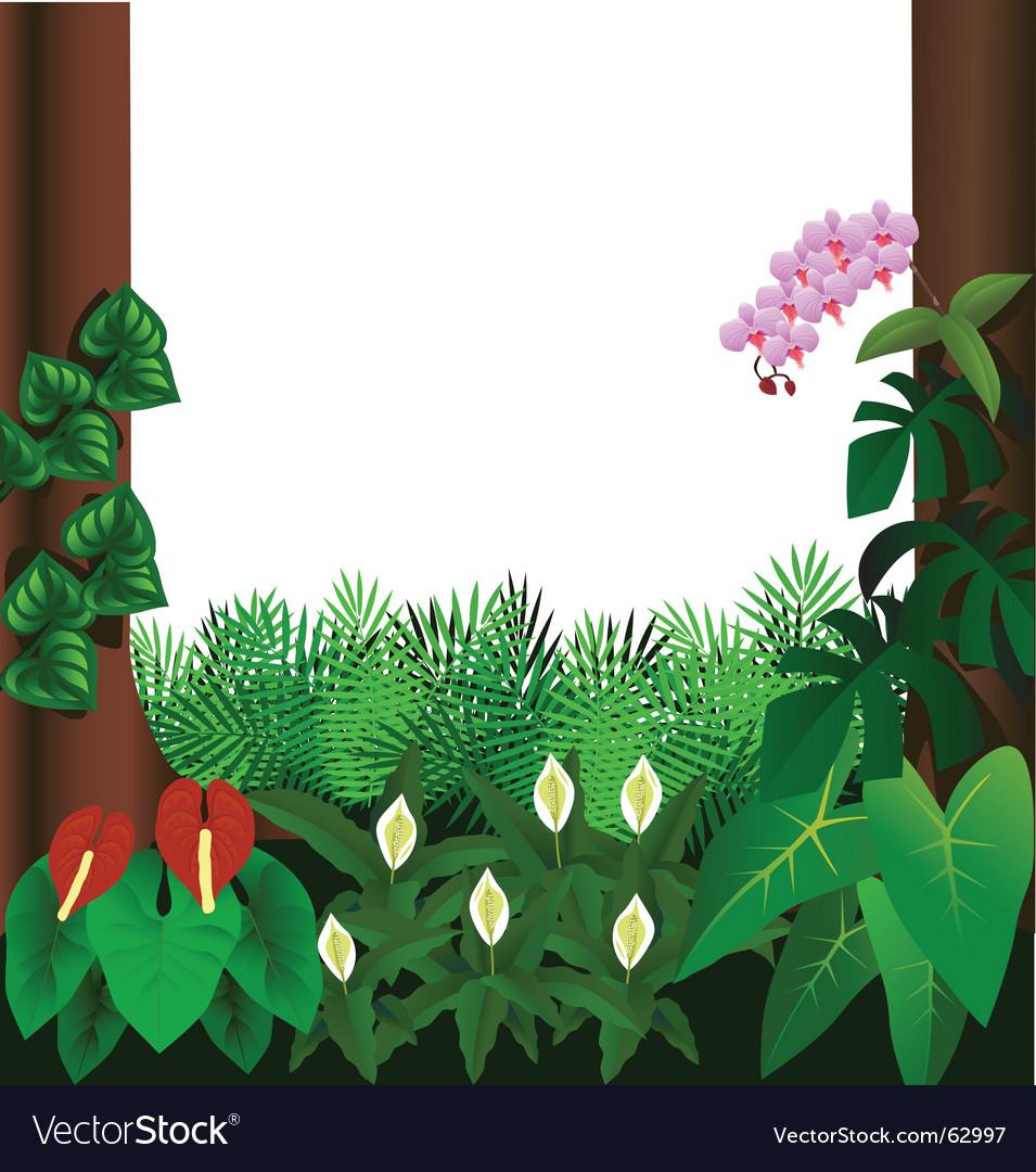 Forest view vector image