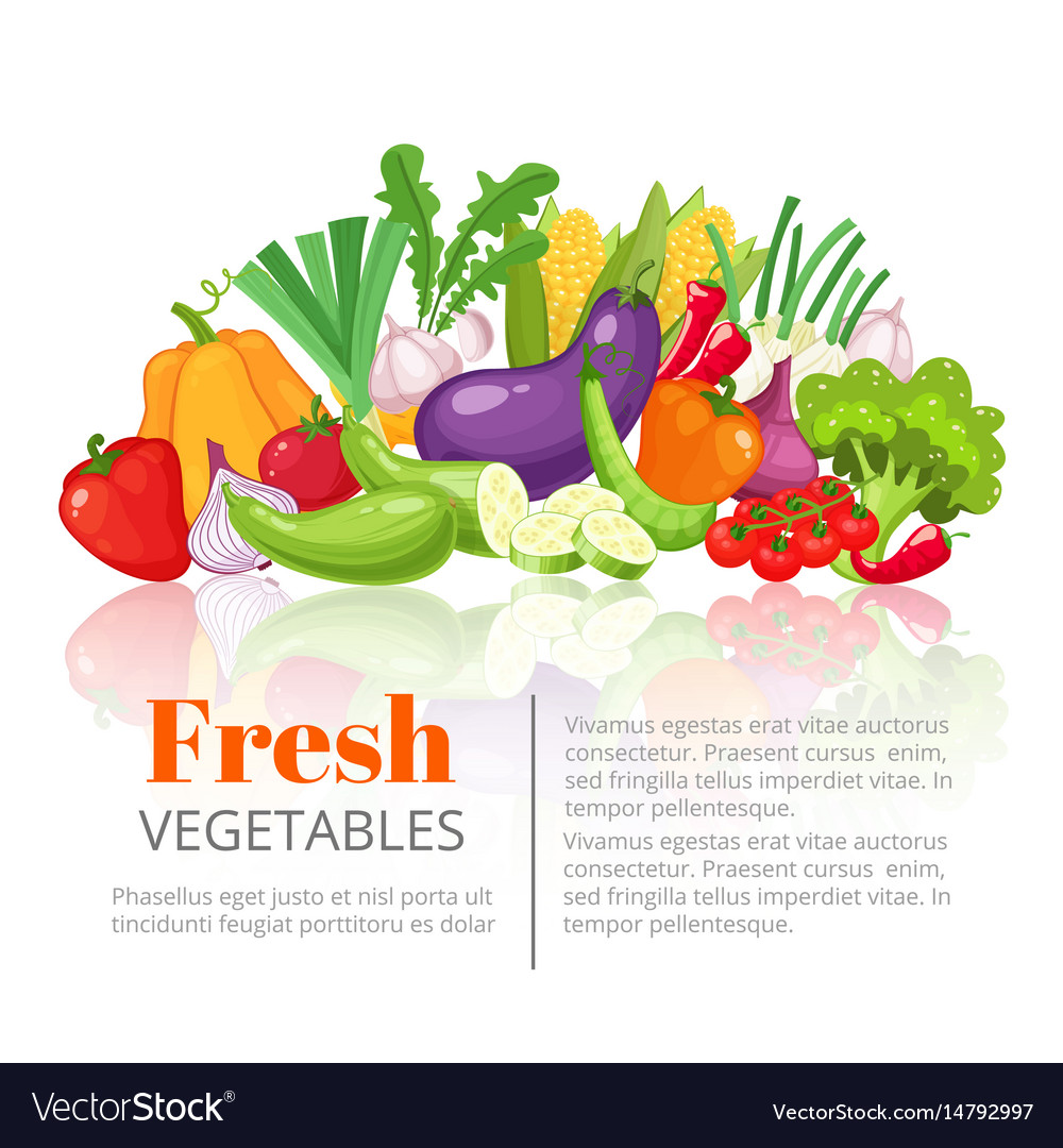 Vegetables posterscientific article heading or vector image