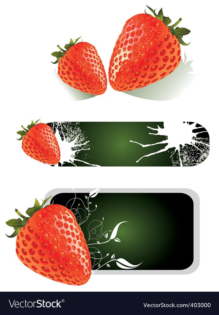 Strawberry food design vector image