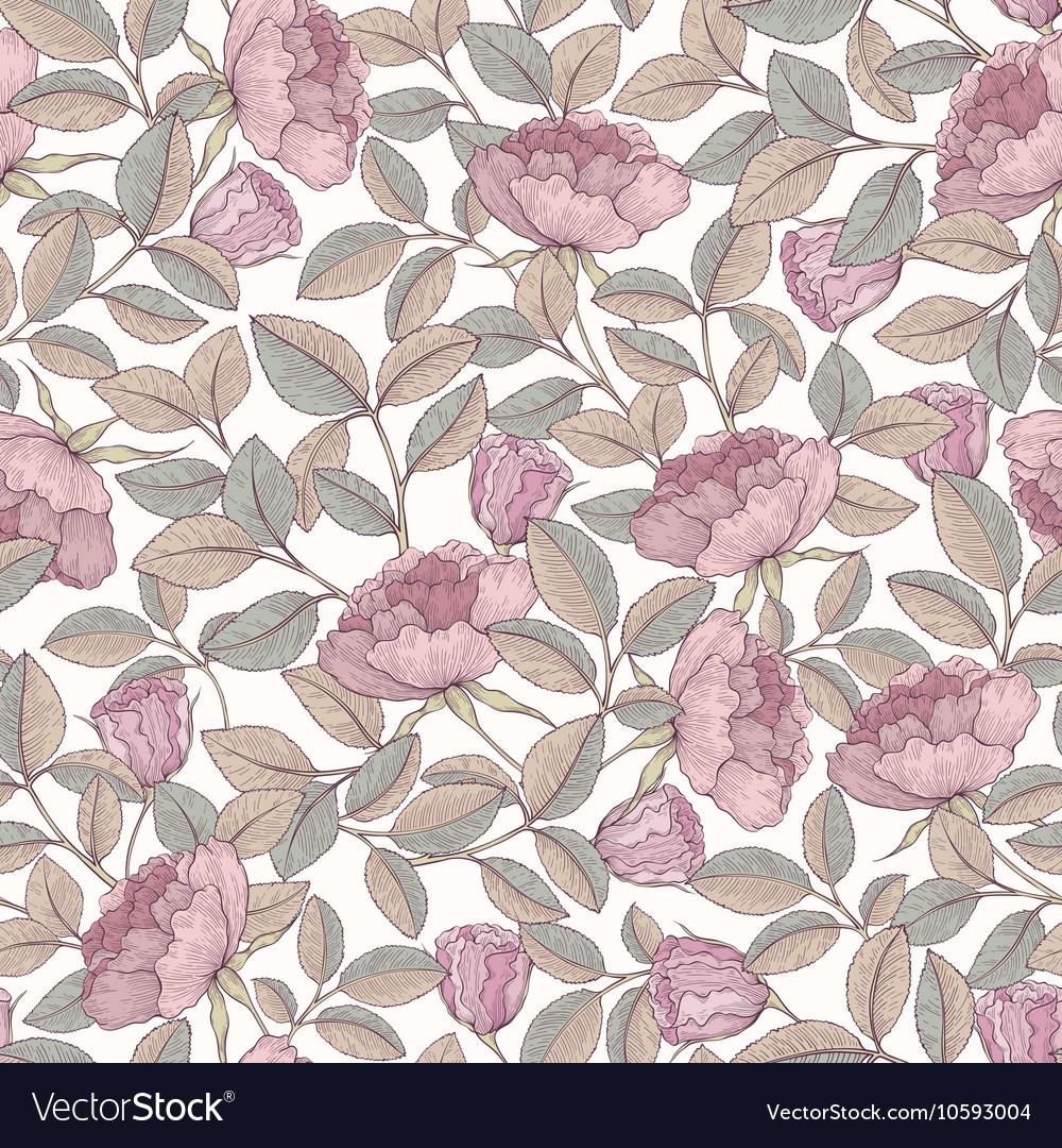 Hand drawn rose garden vector image
