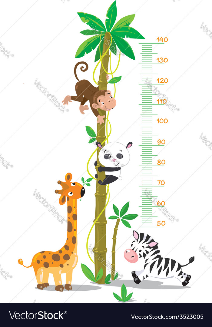 Meter wall with palm tree and funny animals vector image