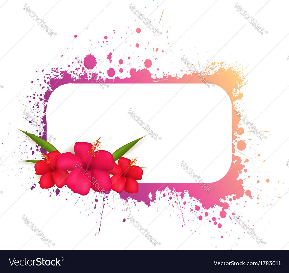 Grunge frame with hibiscus vector image