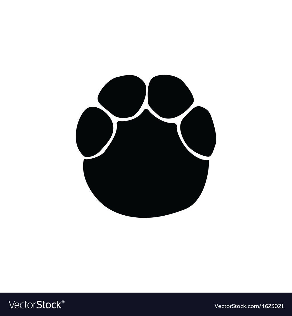 Elephant footprint vector image