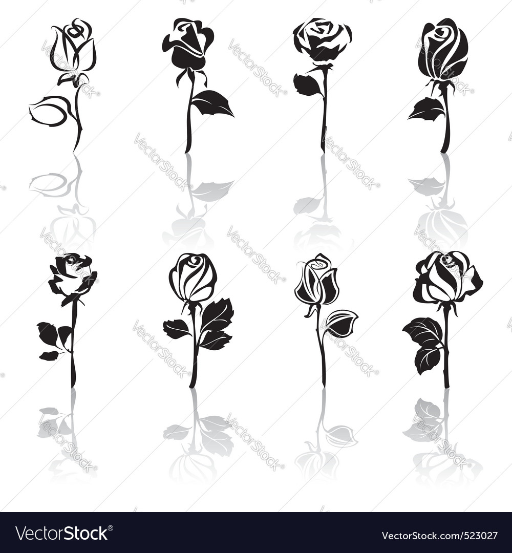 Icon set of roses with reflections Vector Image