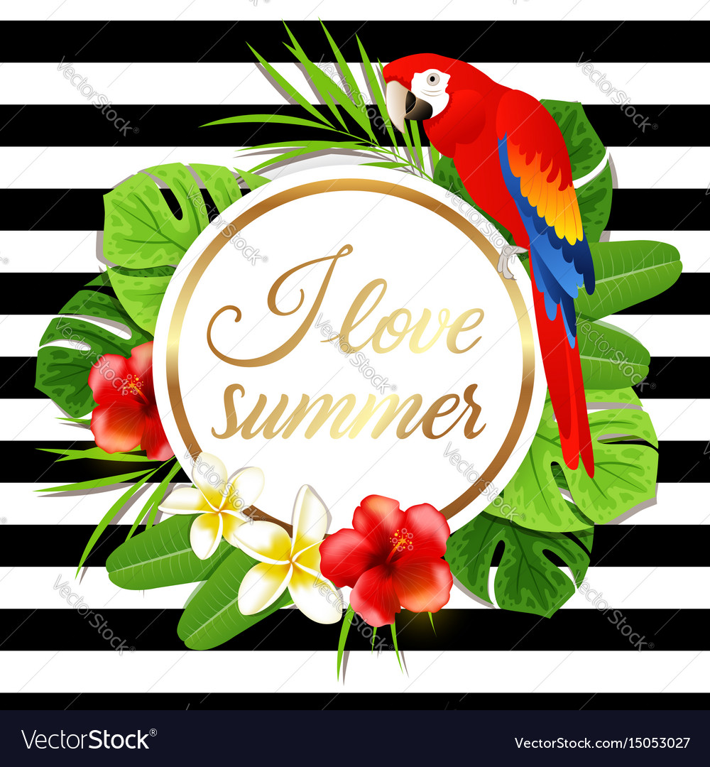 Summer banner with red parrot vector image