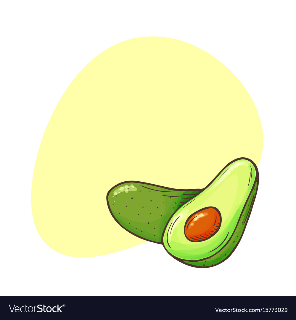 Avocado poster whole avocados sliced pieces cut vector image