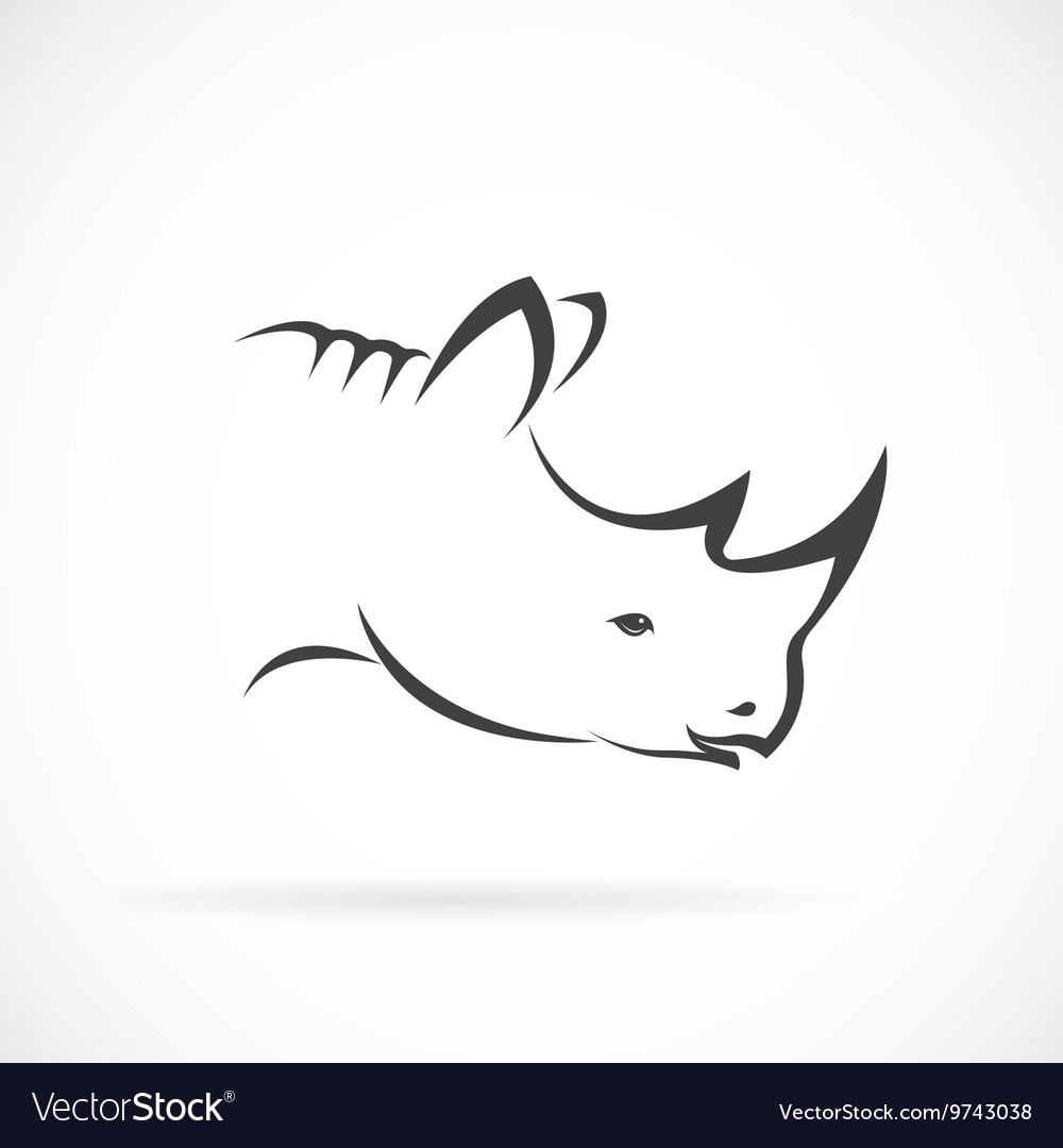 Image of rhino head on white background vector image
