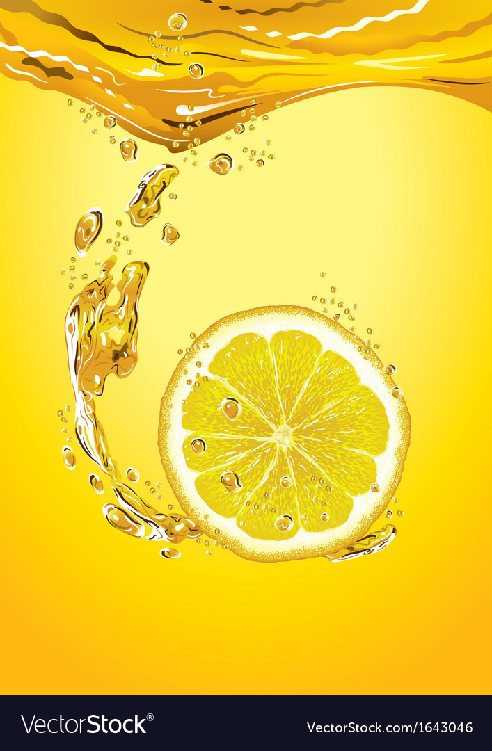 Lemon Slice With Bubbles vector image