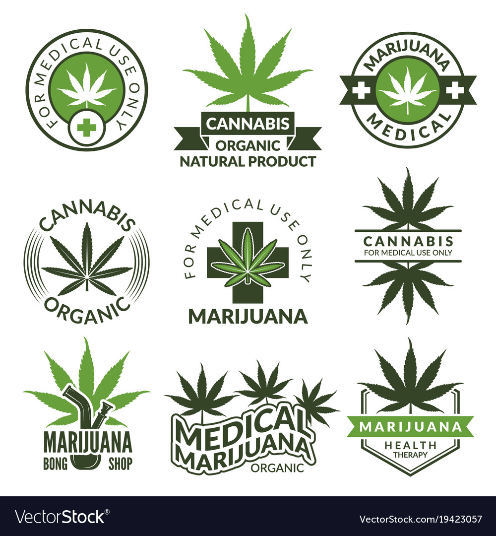 Labels set with different pictures of marijuana vector image