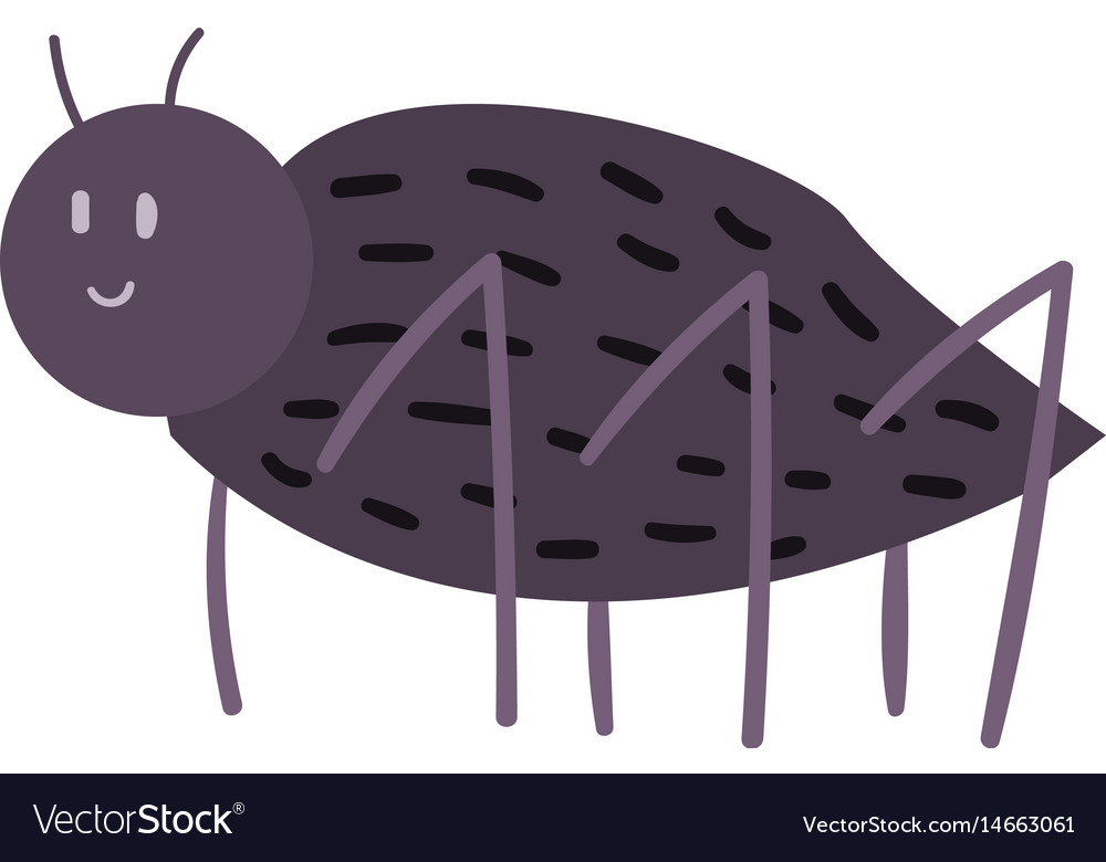 Black spider insect icon isolated wildlife wing vector image