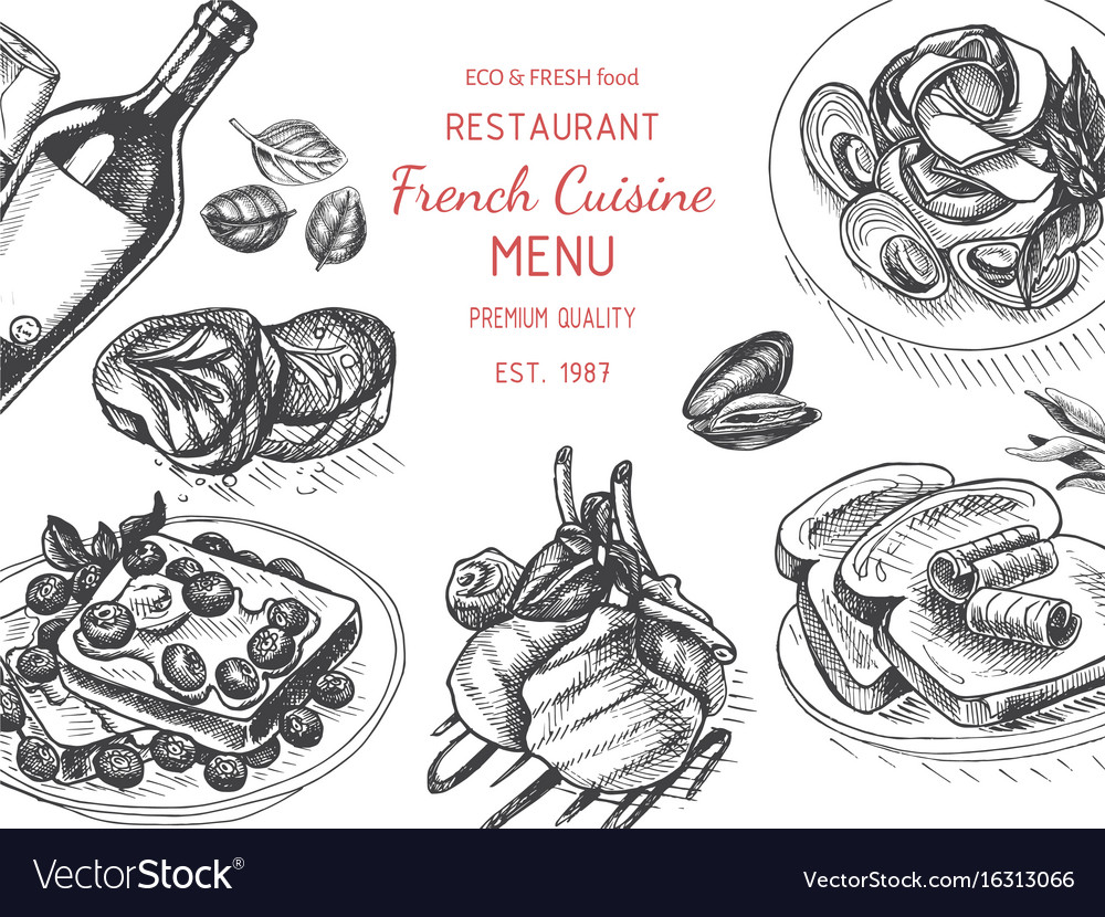 Sketch - breakfast card menu vector image