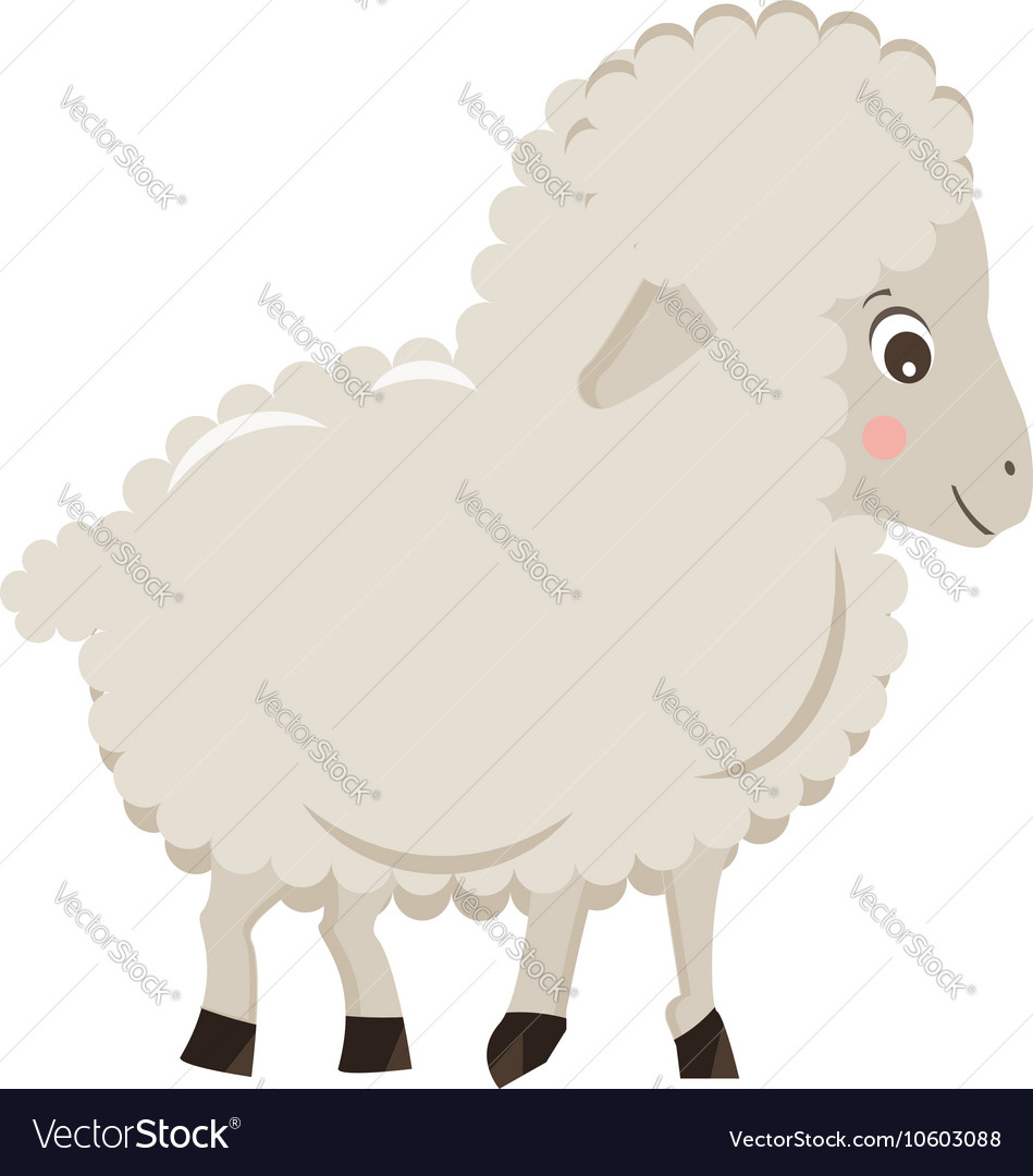 Cute cartoon little sheep isolated on white vector image