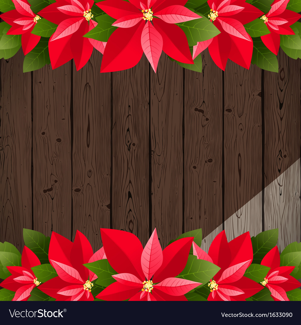 Wooden back with poinsettia vector image