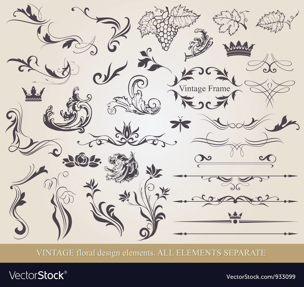 Collection of floral elements Vector Image
