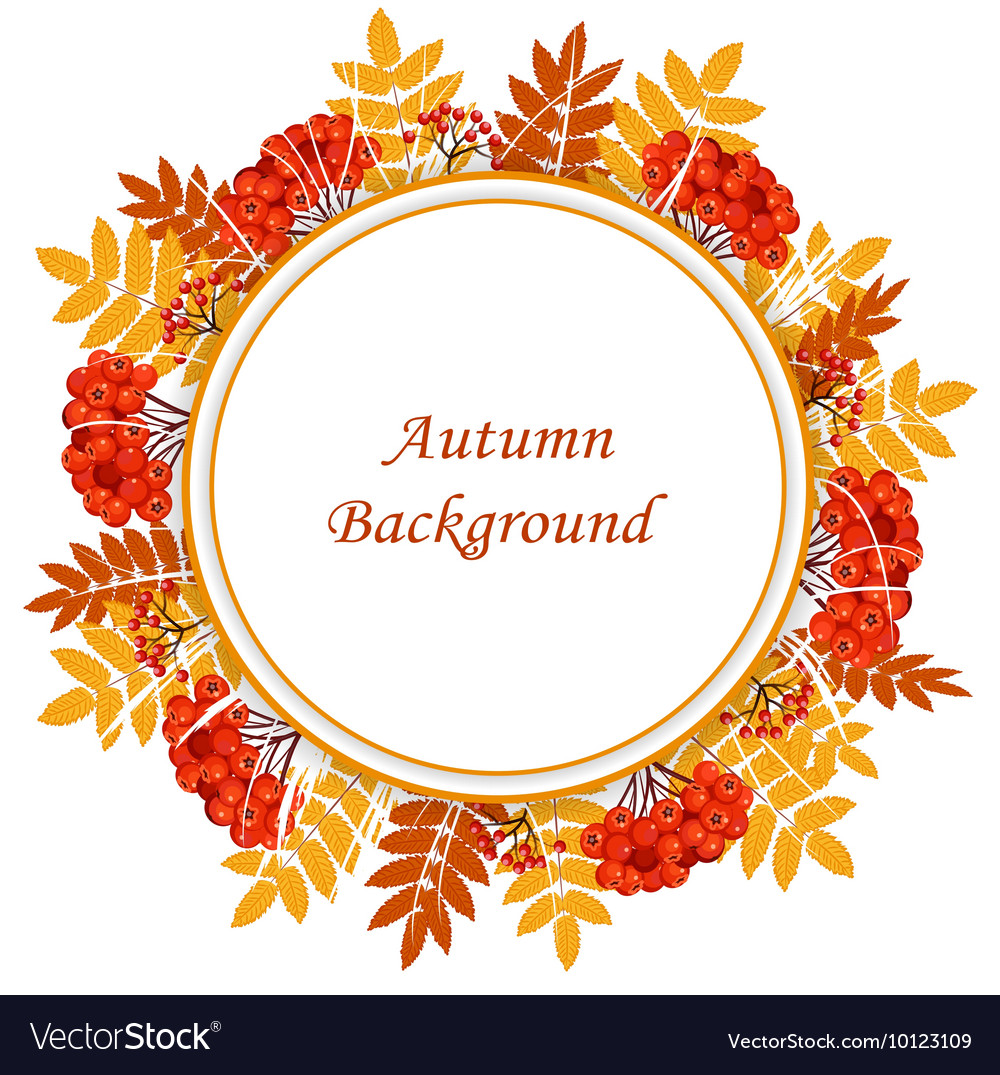 Frame with autumn leaves and berries vector image