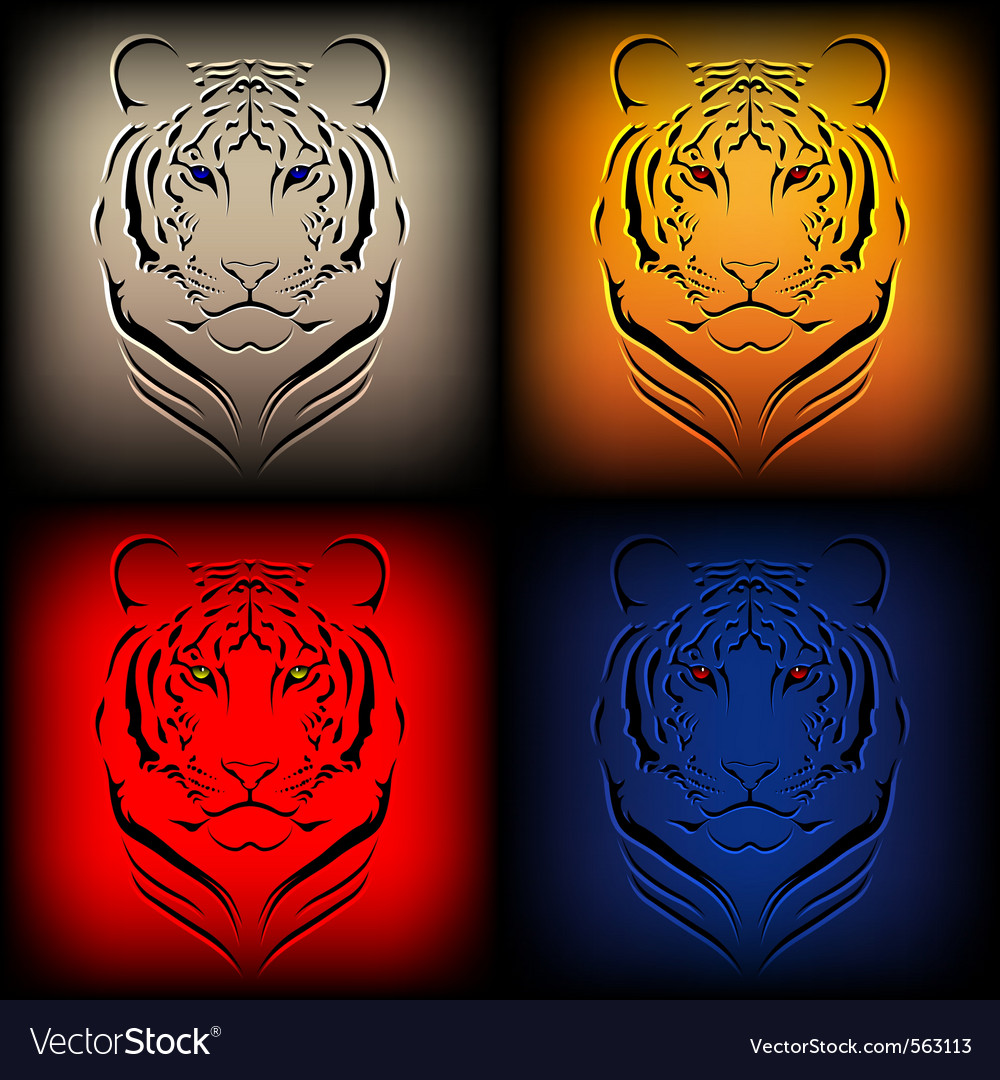 Tiger graphics vector image