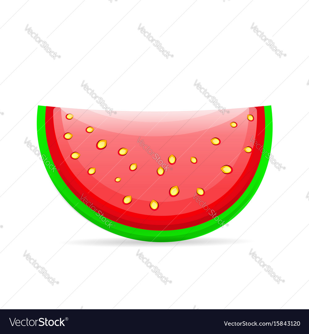 Flat icon slice of watermelon vector image
