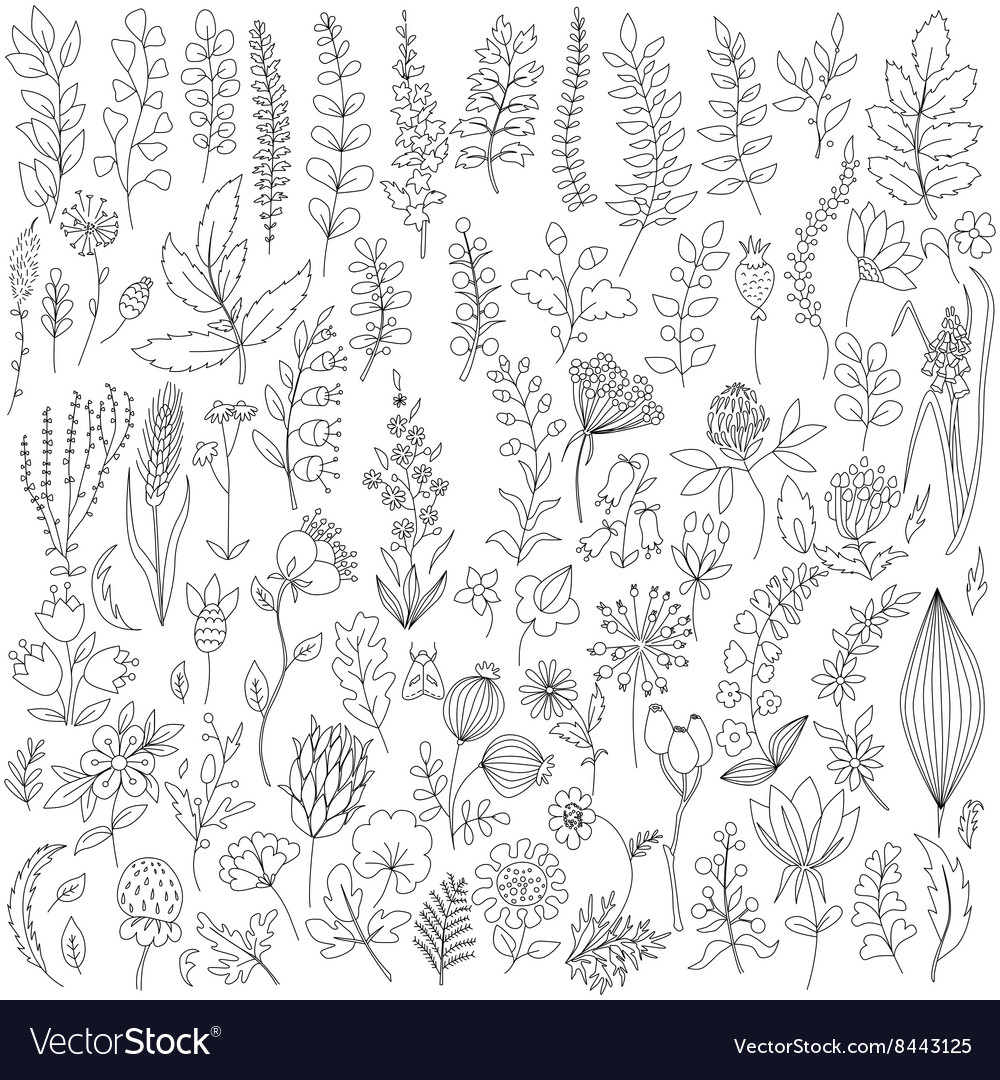 Handmade flowers and leaf elements set vector image