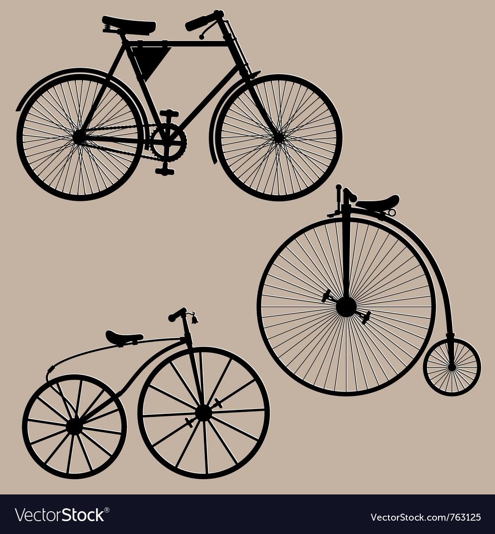 Vintage bicycles vector image