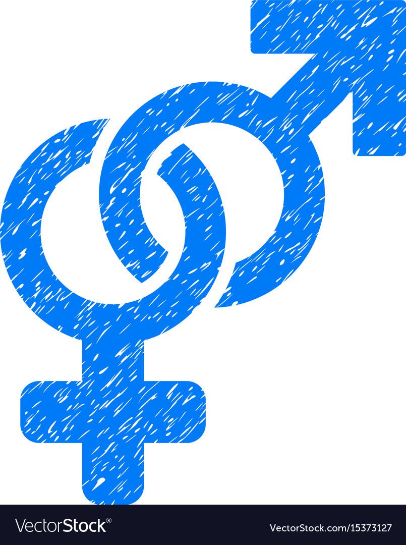 Heterosexual symbol grunge icon vector image