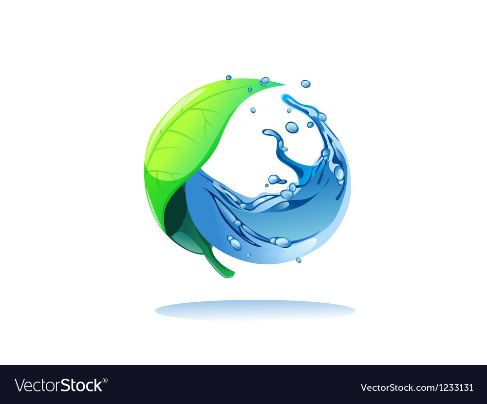 Leaf and water vector image