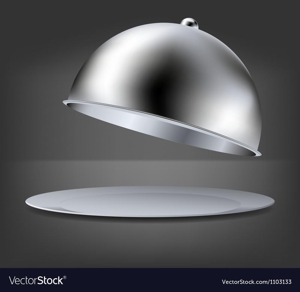 Hot Food platter vector image