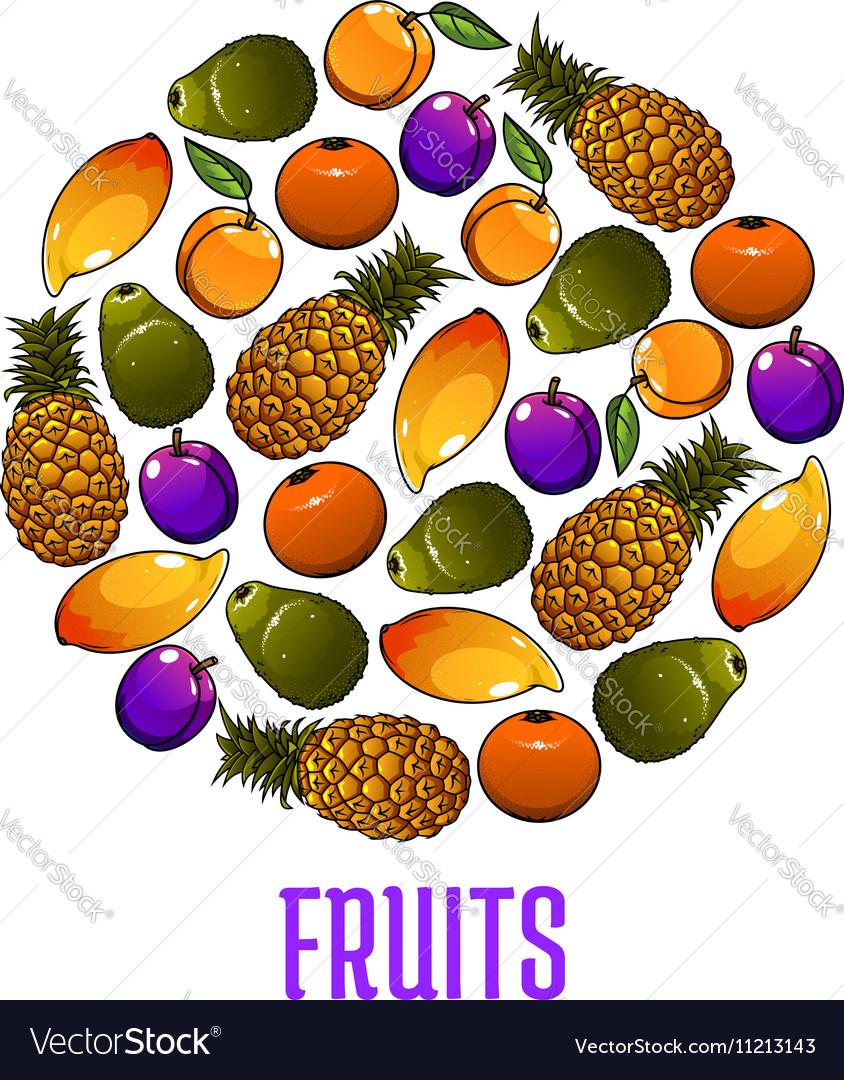 Emblem of fresh fruits icons in circle shape vector image