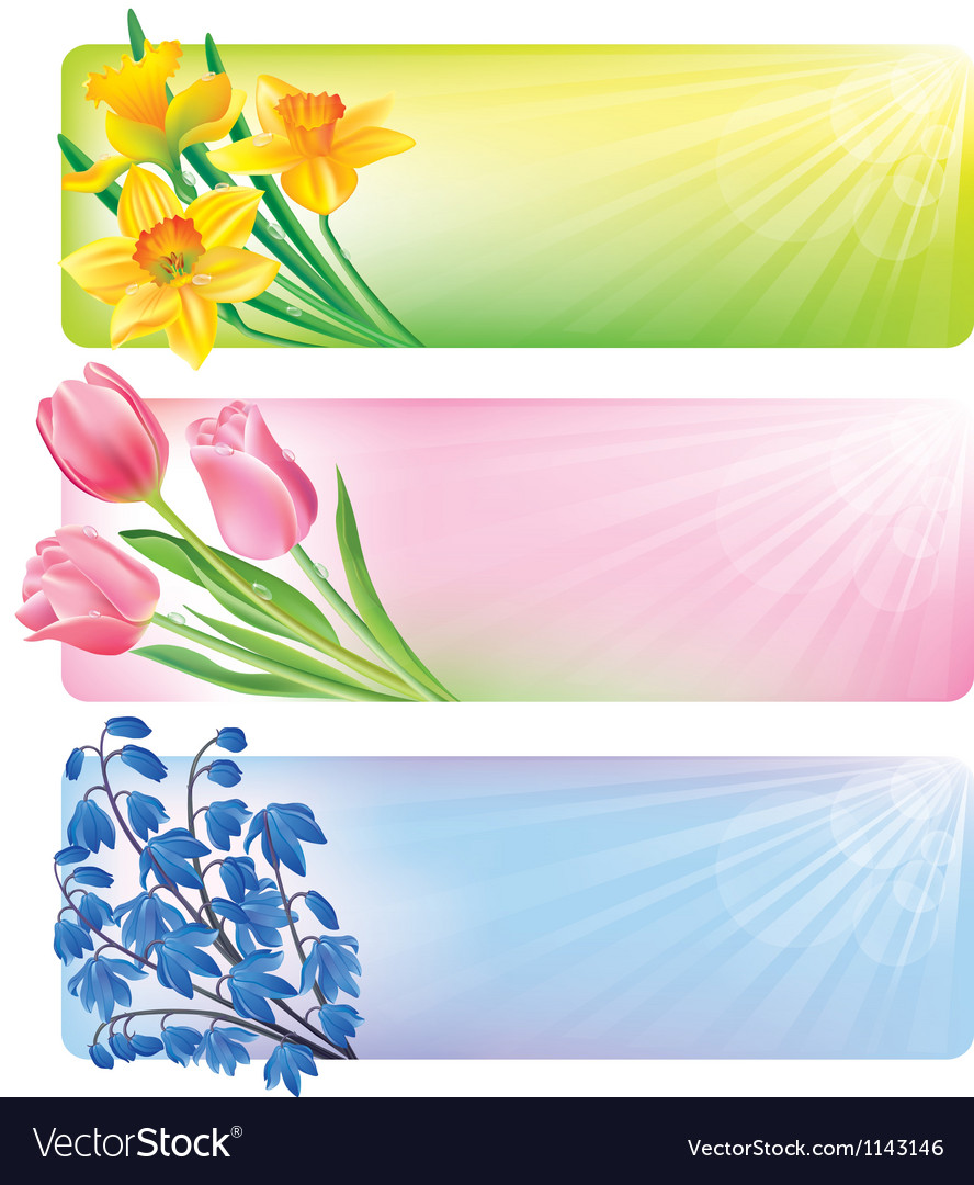 Horizontal spring banners of flowers vector image