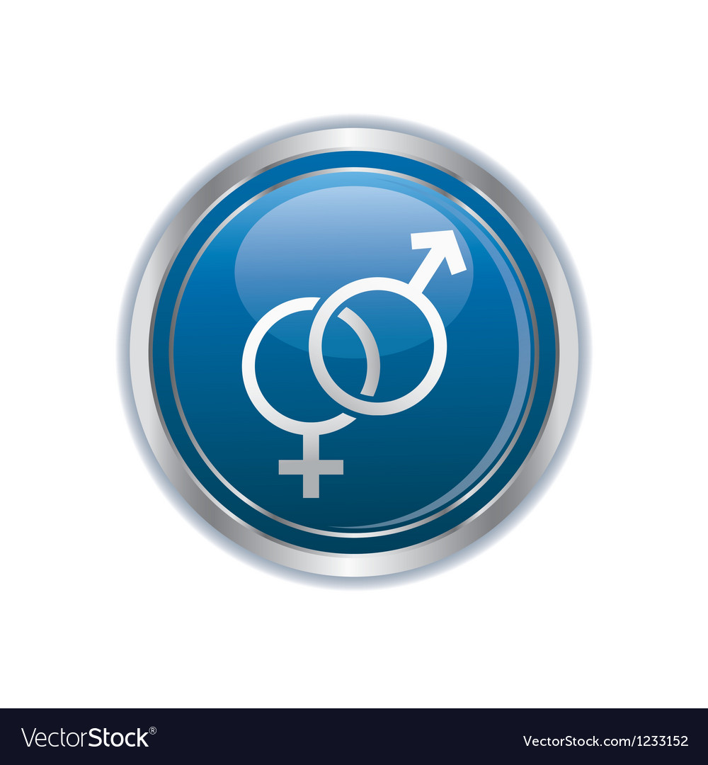 Button with female and male symbol vector image