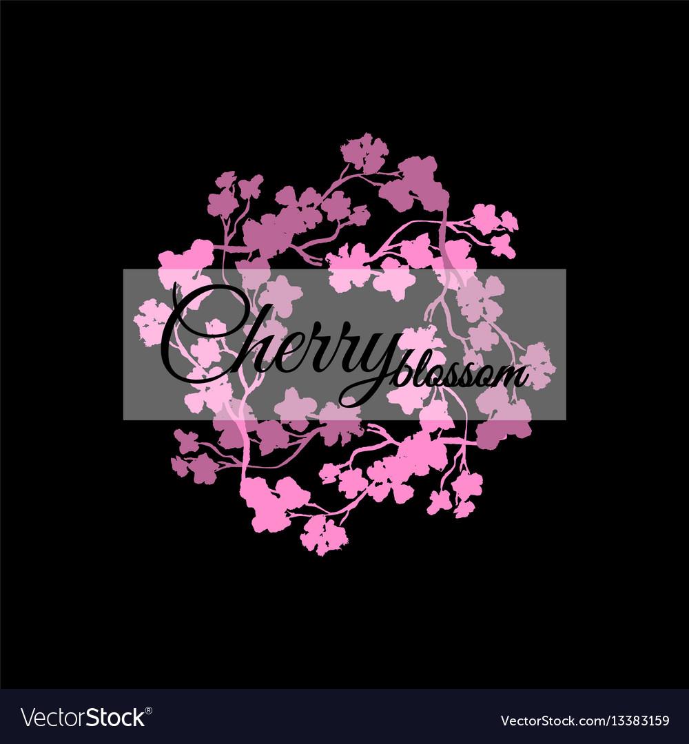 Pink sakura blossom japanese cherry black vector image