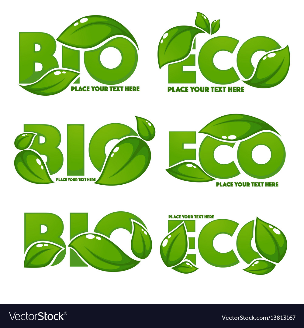 Collection of bright and shine leaf signs symbols vector image buycottarizona Choice Image