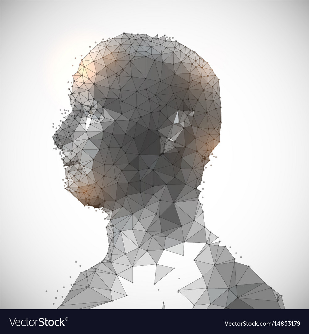 Low poly face design vector image