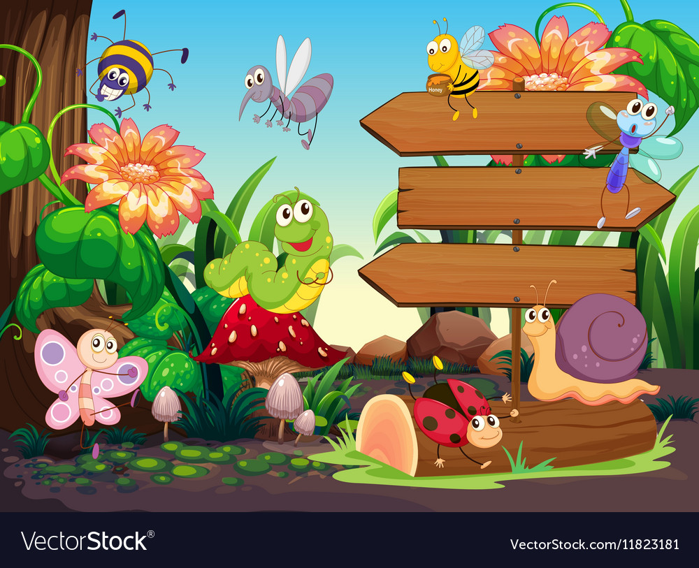 Wooden signs and insects in garden vector image