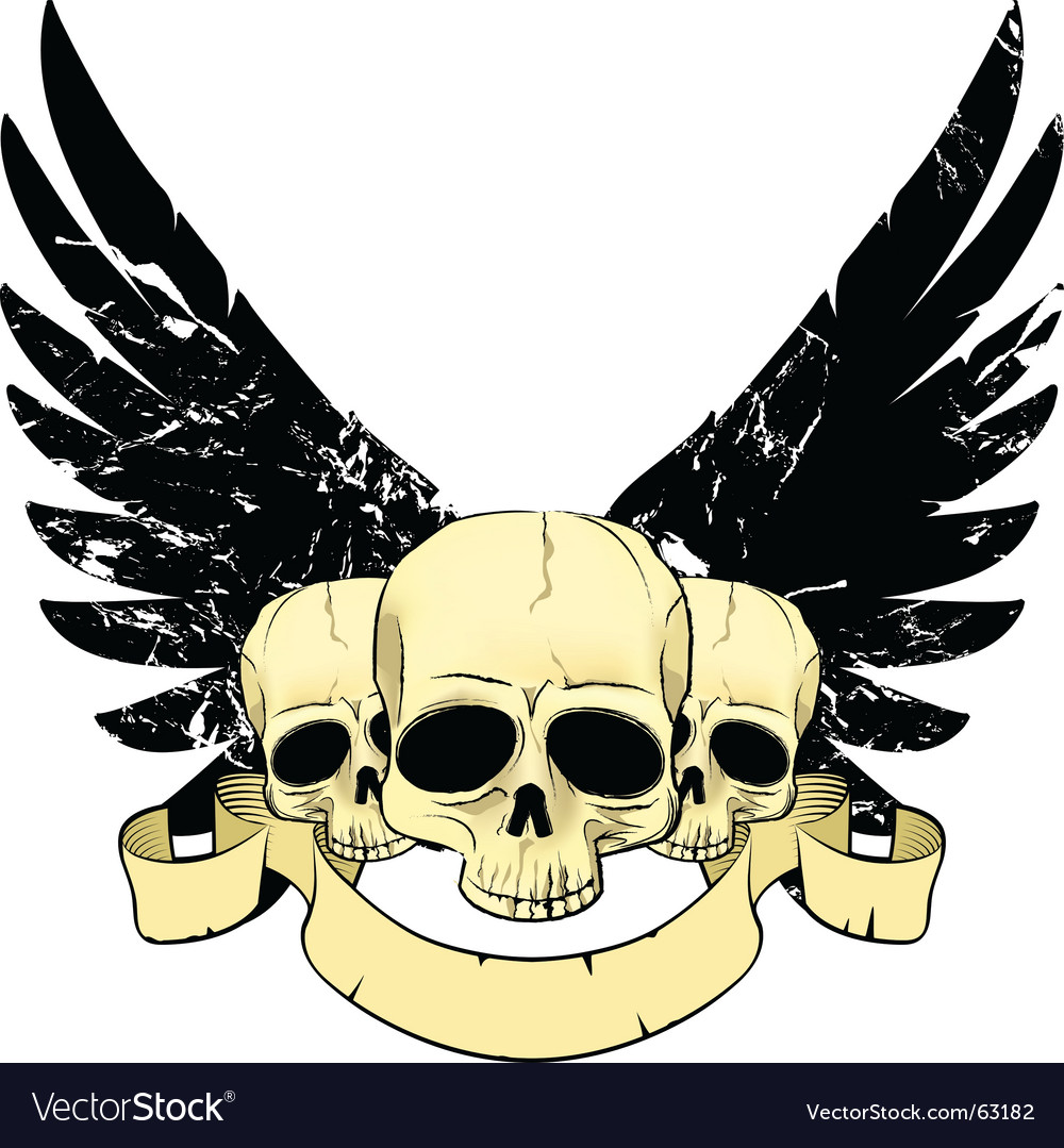 Skulls wings vector image