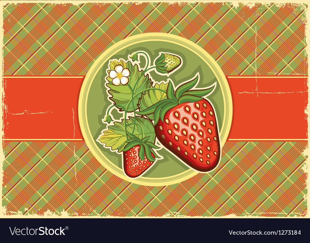 Strawberries vintage background Vector Image