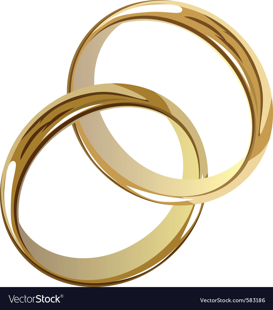 Wedding rings Royalty Free Vector Image - VectorStock
