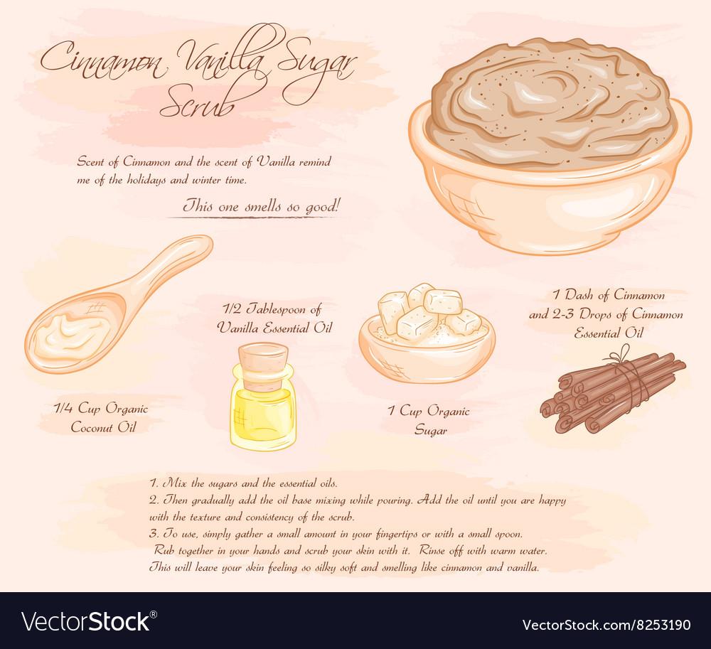 Hand drawn of cinnamon vanilla sugar scrub recipe vector image