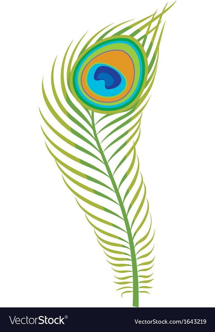 Peacock Feather Logo Design