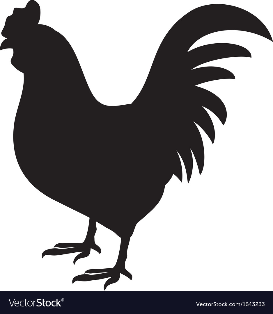 Rooster silhouette vector image