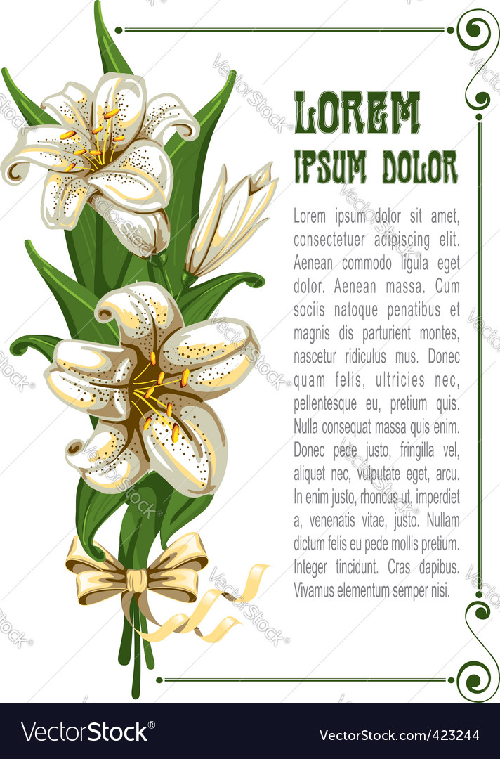 Bouquet with lilies vector image