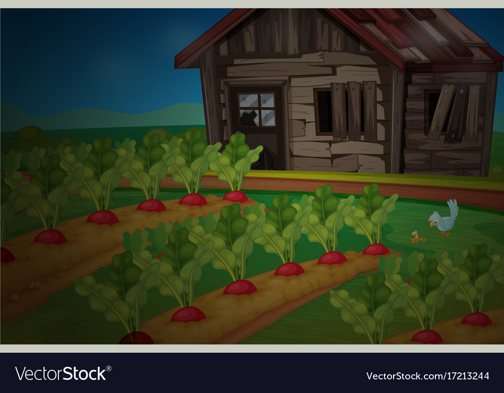Wooden Hut By The Vegetable Garden Vector Image