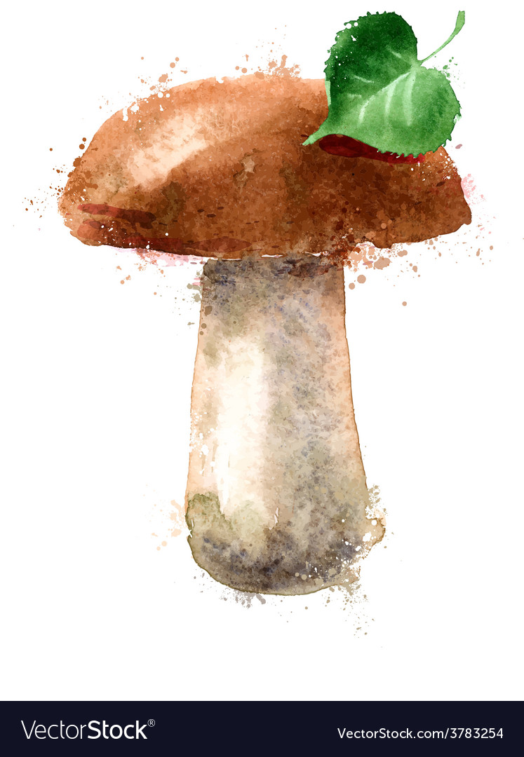 mushroom logo design template nature or royalty free vector
