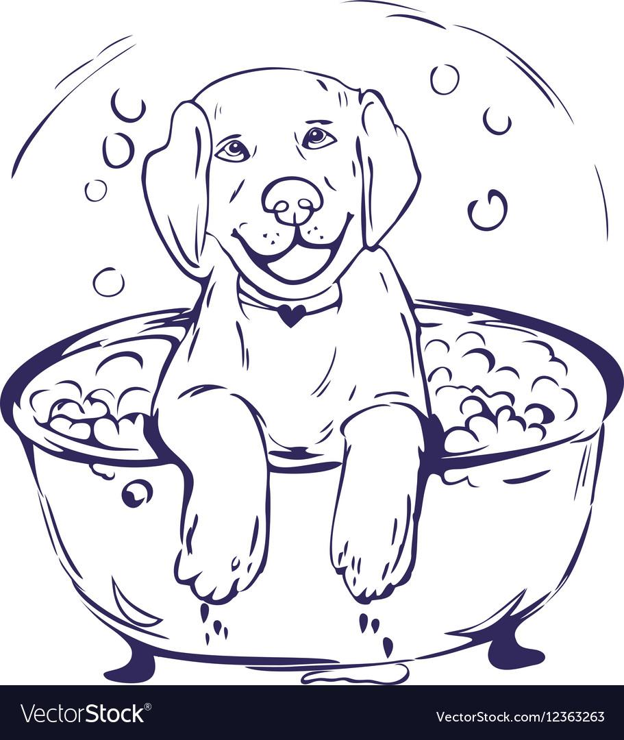 Dog bath grathic vector image