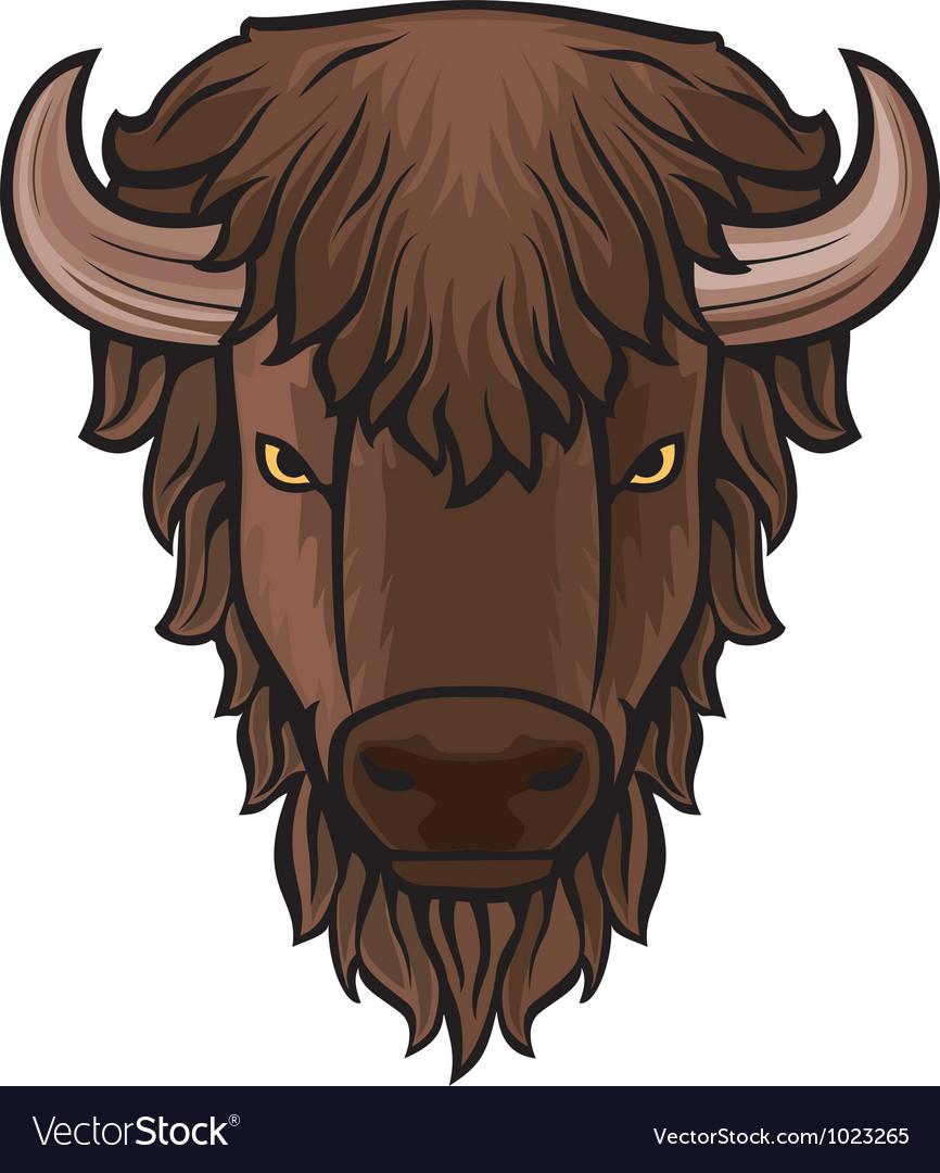 Buffalo head vector image