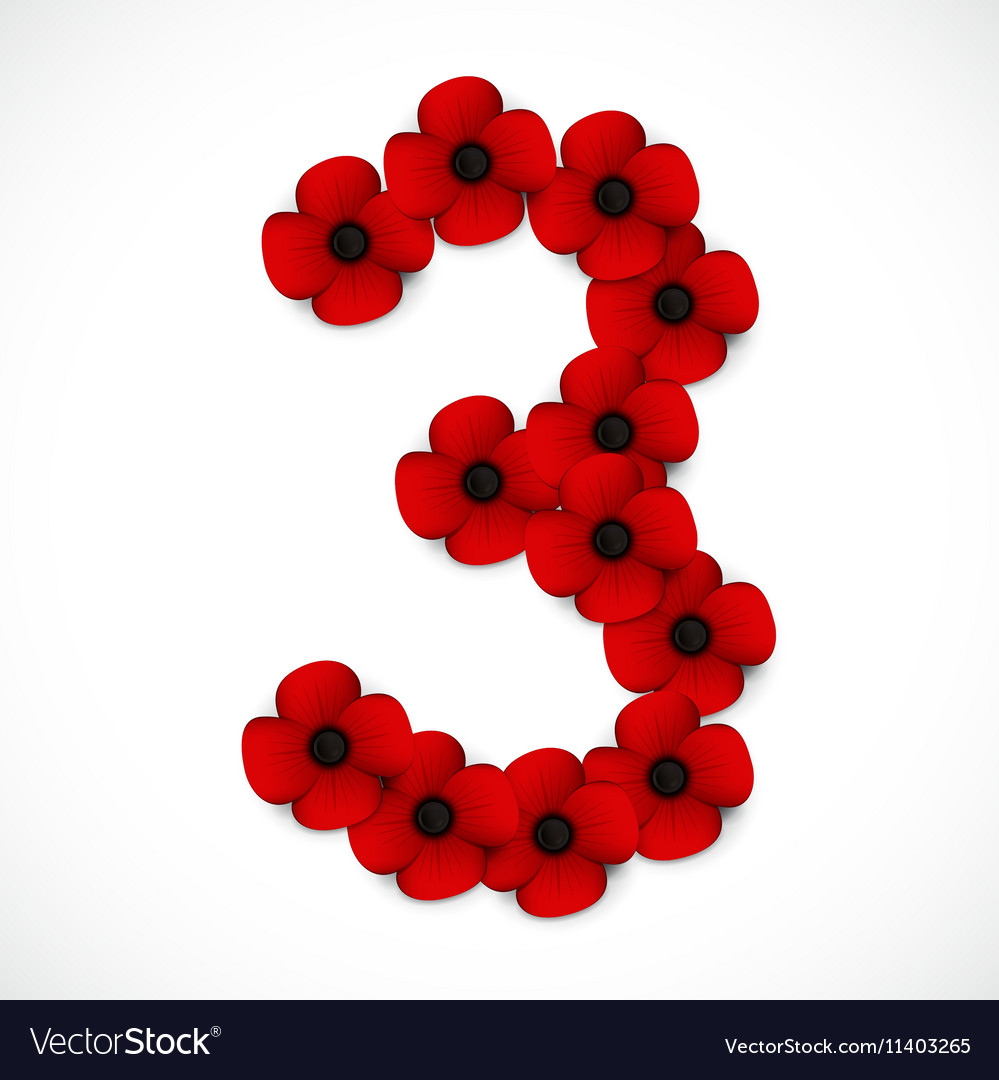 Poppies number three vector image