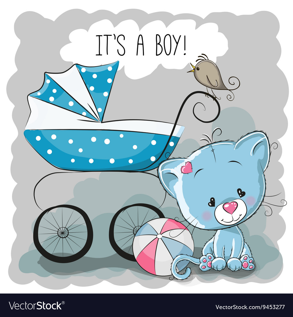 Cat with baby carriage vector image