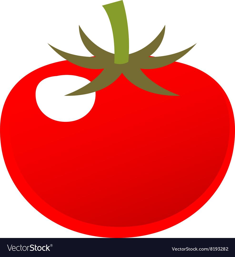 Tomato-380x400 vector image